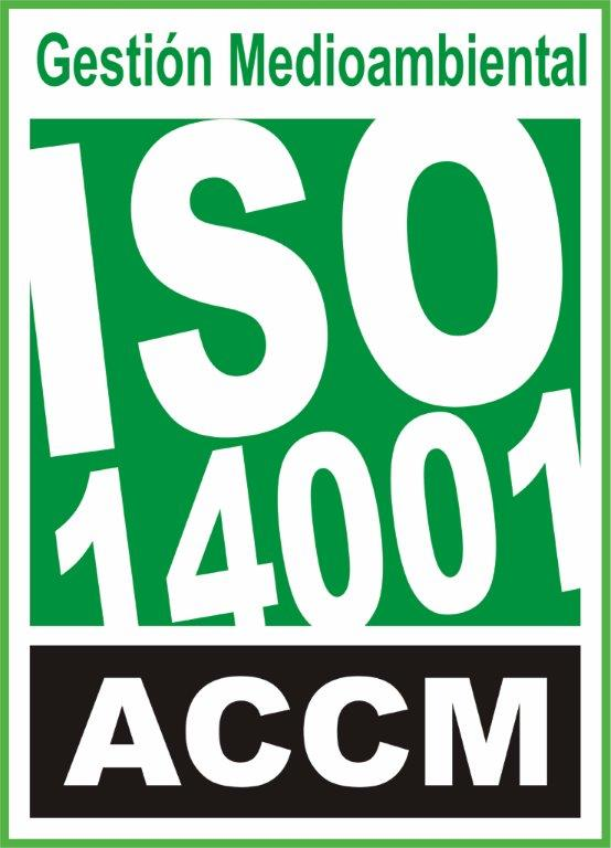 iso 9001 format